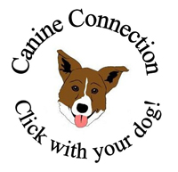 Canine Connection LLC